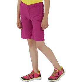 Regatta Sorcer Shorts Kids vivid viola